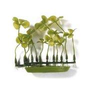 Четырехлистник, растение пластиковое зеленое Marina®