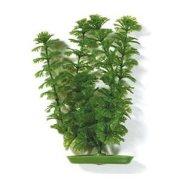 Амбулия 50см, растение пластиковое зеленое Marina®